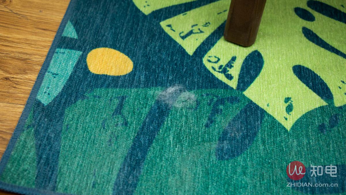 地毯毛发.jpg