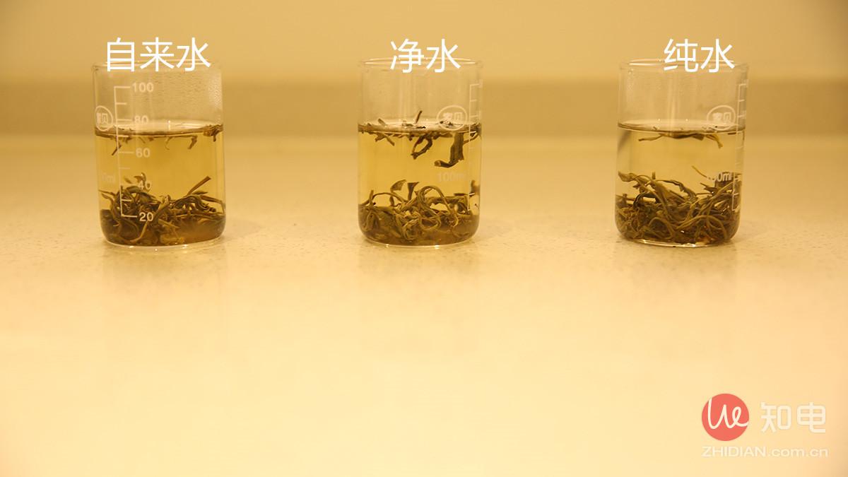 茶叶_副本.jpg