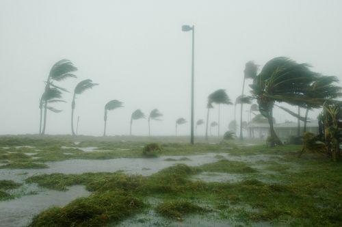20150407201731-hurricane_dennis