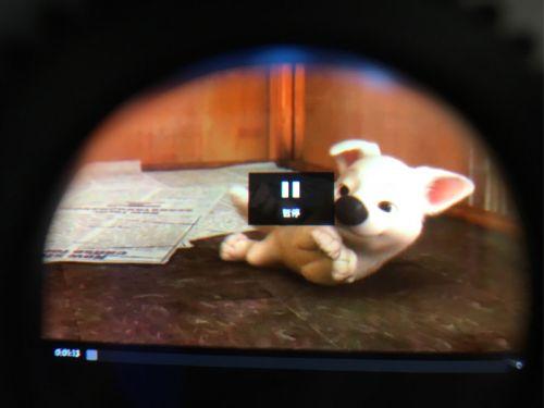 闪电狗眼镜微信